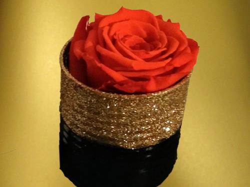 Red-Preserved-Rose